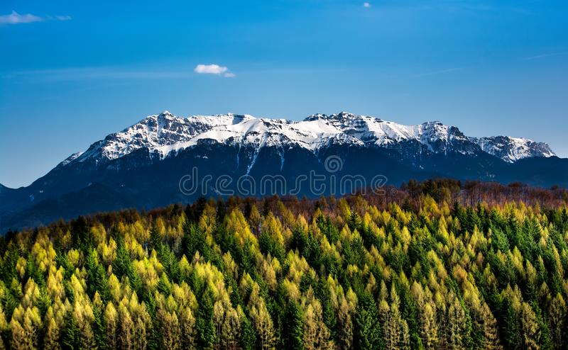 Scène d'hiver et d'automne en Roumanie, gel blanc au-dessus des arbres d'automne photographie stock libre de droits