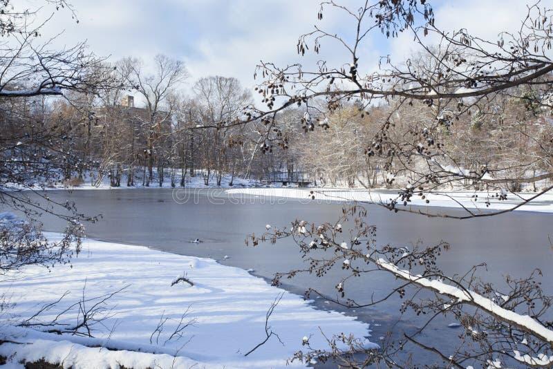 Scène d'hiver sur le lac photos stock