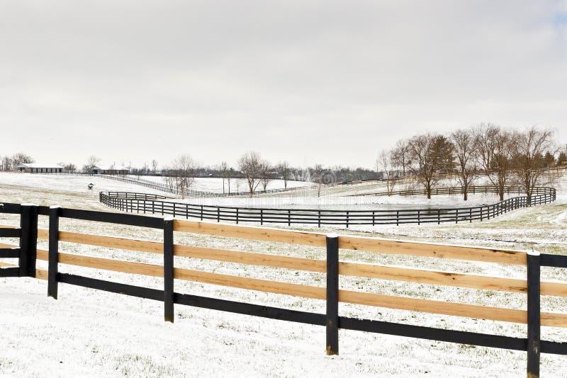 Scène de ferme de cheval de l'hiver avec la frontière de sécurité frais fixe. images libres de droits