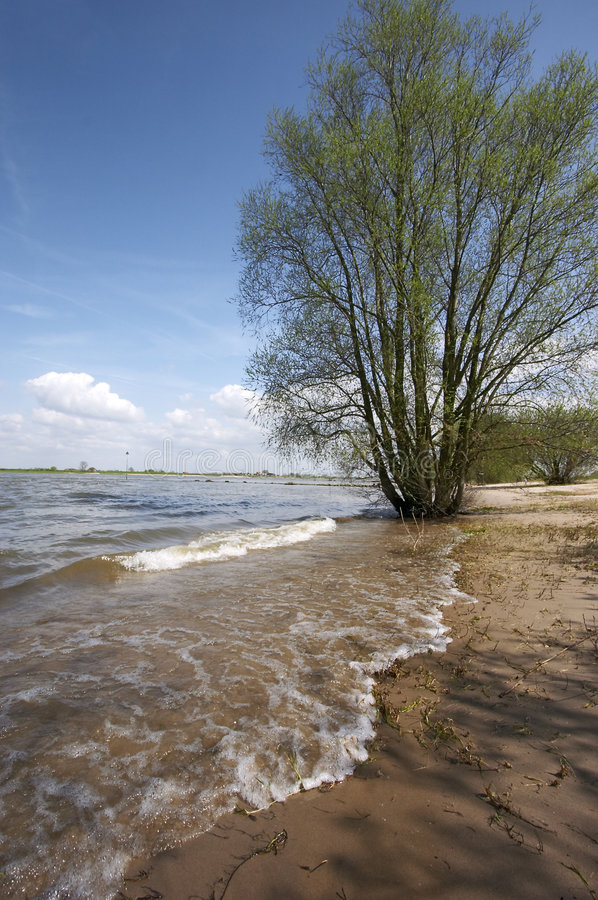Download Scène de fleuve photo stock. Image du rivage, netherlands - 742822