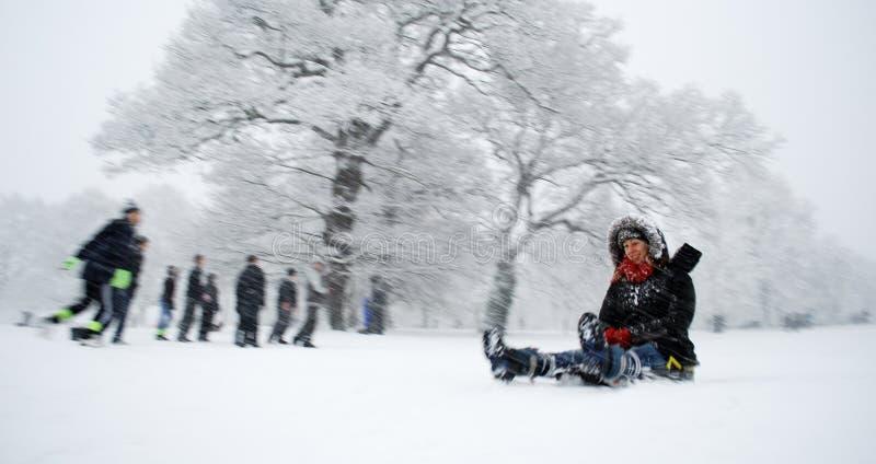 Scène de l'hiver