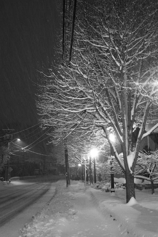 Scène de l'hiver en noir et blanc photos stock