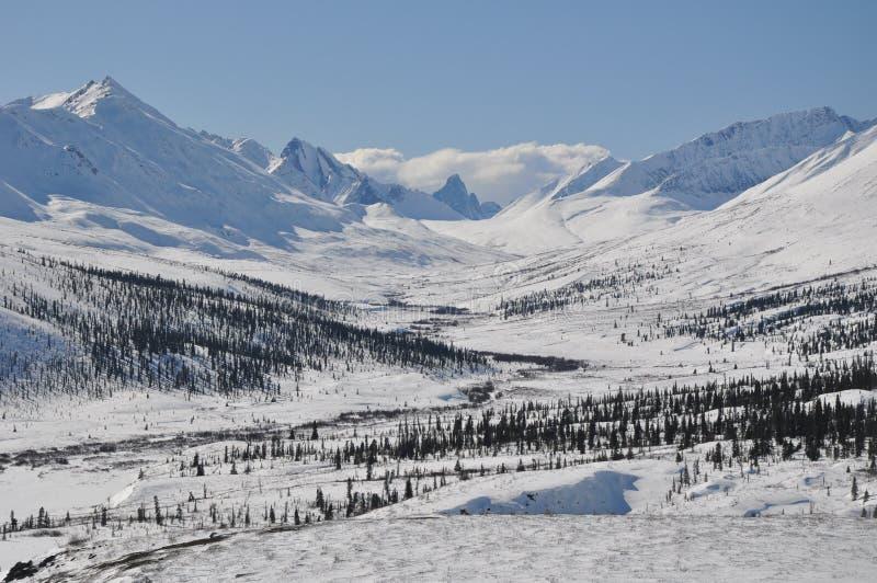 Scène de montagne d'hiver au parc territorial de pierre tombale, le Yukon photos stock