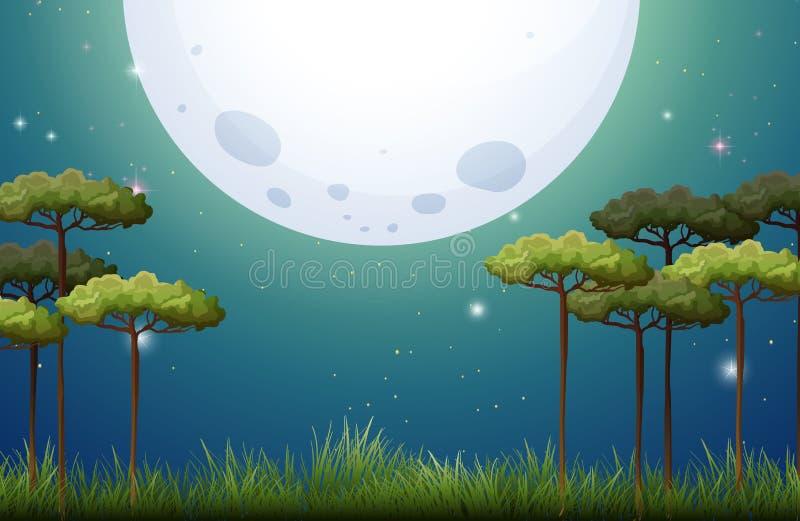 Scène de nature la nuit de fullmoon illustration de vecteur