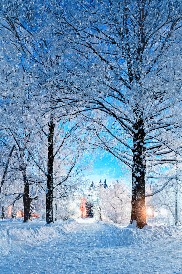 Scène de nuit de paysage d'hiver - passage couvert neigeux abandonné avec des chutes de neige et des arbres neigeux pendant la nu image libre de droits