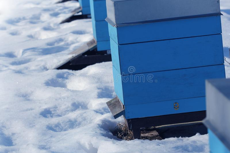 Scène de pays d'hiver avec des ruches couvertes de neige image stock