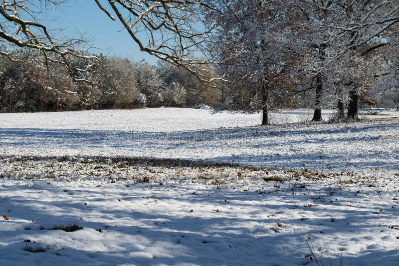 Scène de paysage d'hiver avec les arbres et la neige photographie stock
