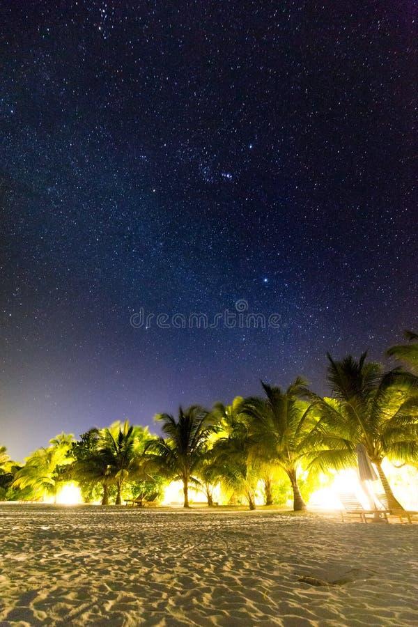 Scène de plage la nuit Étoiles et manière laiteuse avec les palmiers et la plage sablonneuse photos stock