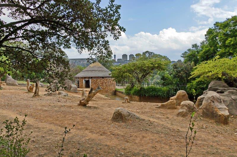 Scène de zoo de Johannesburg photographie stock