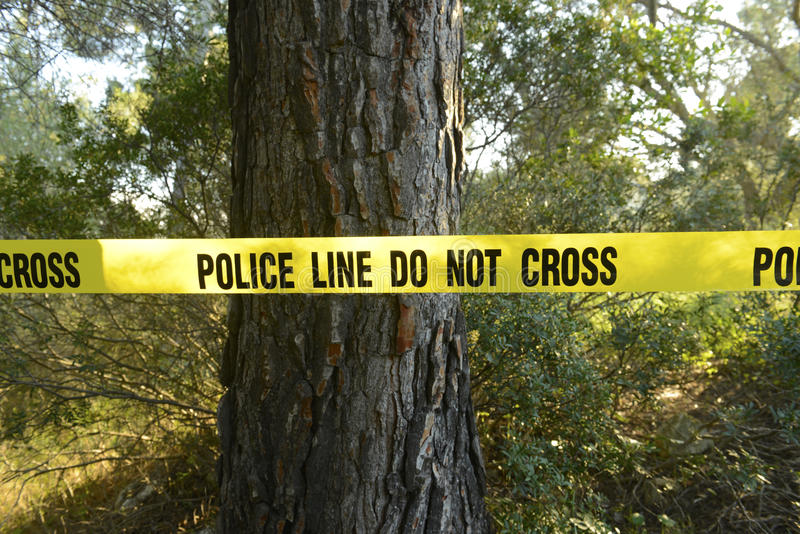 Scène du crime dans la forêt photo stock