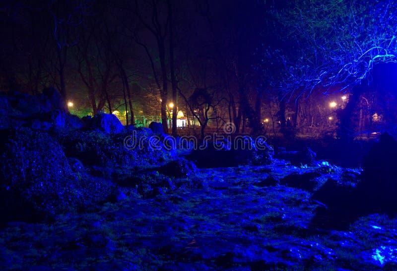 Scène irréelle d'une soirée pluvieuse en parc photo libre de droits