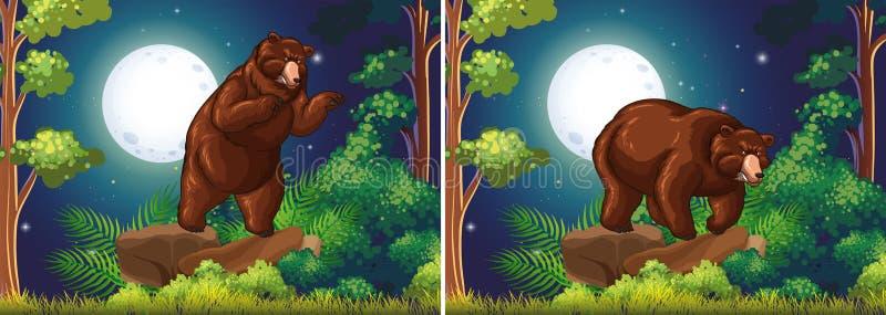 Scène met bruine beer in het bos vector illustratie