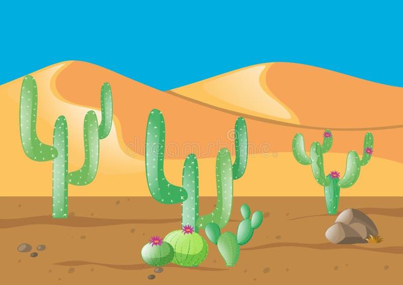 Scène met cactus op woestijngebied stock illustratie