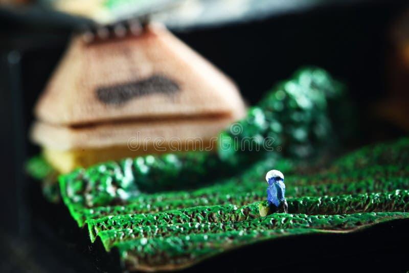 Sc?ne mod?le d'agriculteur japonais miniature image libre de droits