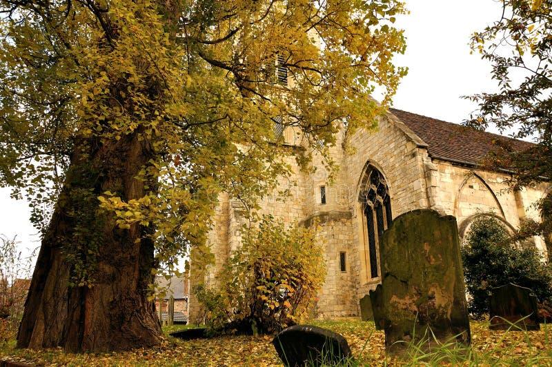 Scène North Yorkshire Angleterre d'automne photos libres de droits