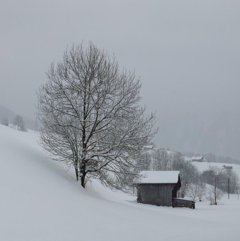 Scène rurale d'hiver dans les Alpes suisses photos libres de droits