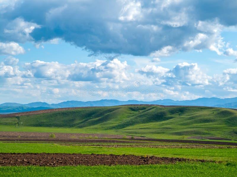 Scène rurale de ressort, champs verts frais et colline images libres de droits