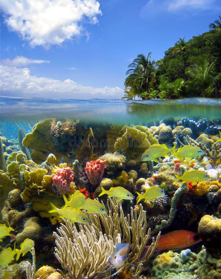 Scène sous-marine avec le ciel et l'île images stock