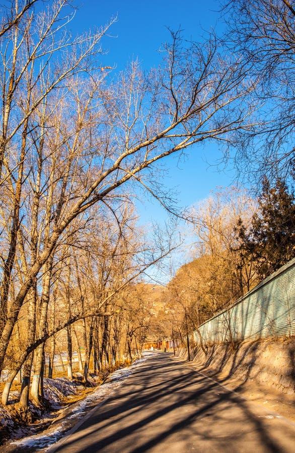 Scène tôt d'hiver dans la Chine du Nord photos libres de droits