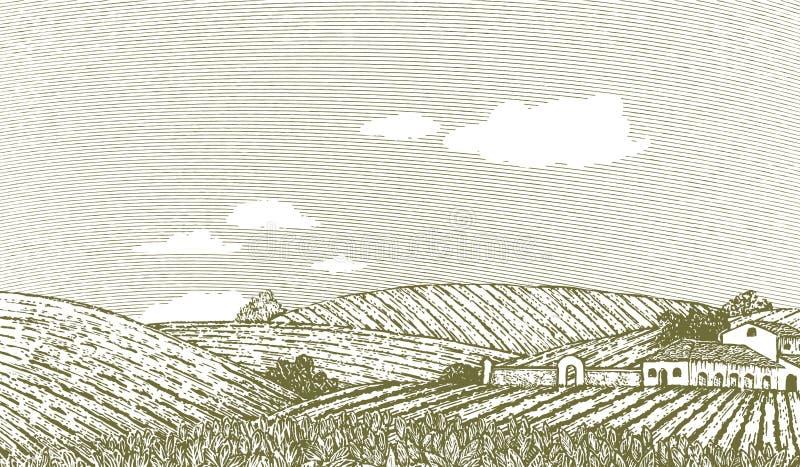 Scène toscane de paysage illustration de vecteur