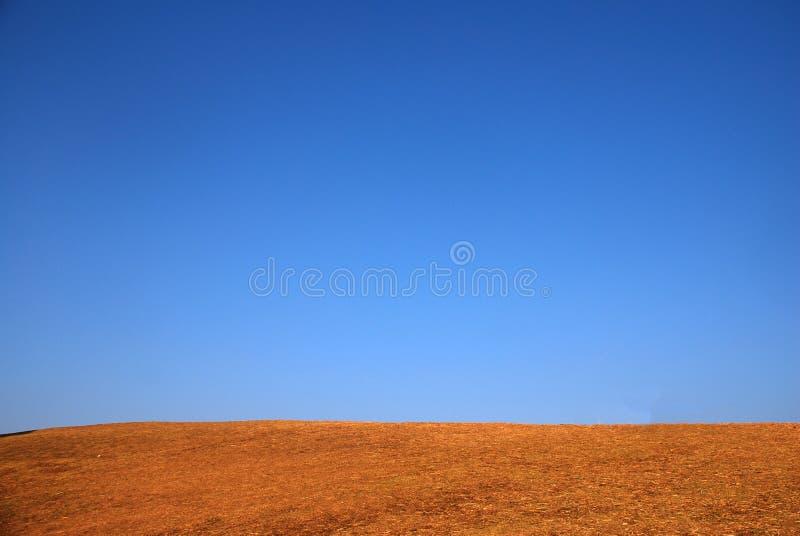 Scène tranquille de texture de colline de ciel bleu clair et d'herbe sèche photo stock