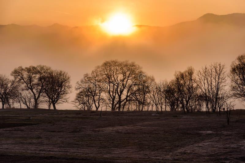 Scène van Berg met sneeuw en mist tijdens de zonsopgang stock fotografie