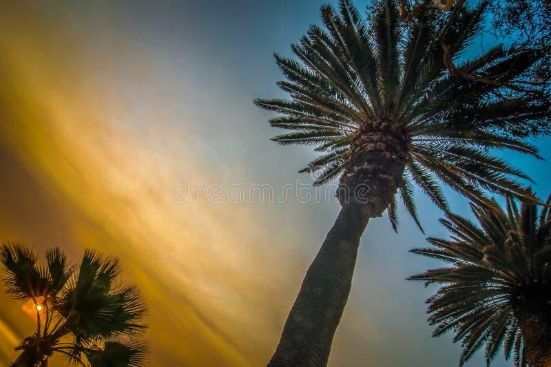 Scènes rond santa Monica Californië bij zonsondergang op vreedzame oceaan royalty-vrije stock fotografie
