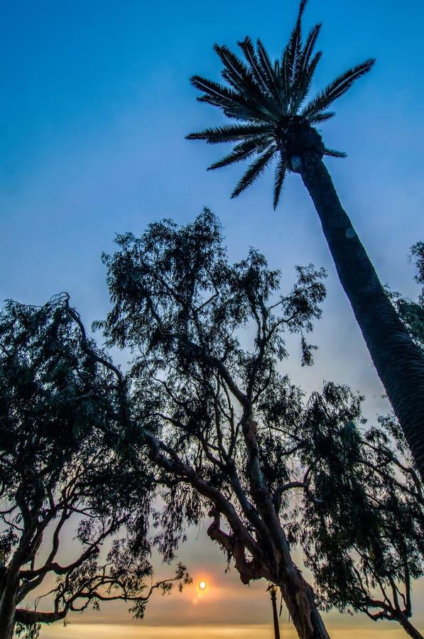 Scènes rond santa Monica Californië bij zonsondergang op vreedzame oceaan royalty-vrije stock afbeeldingen