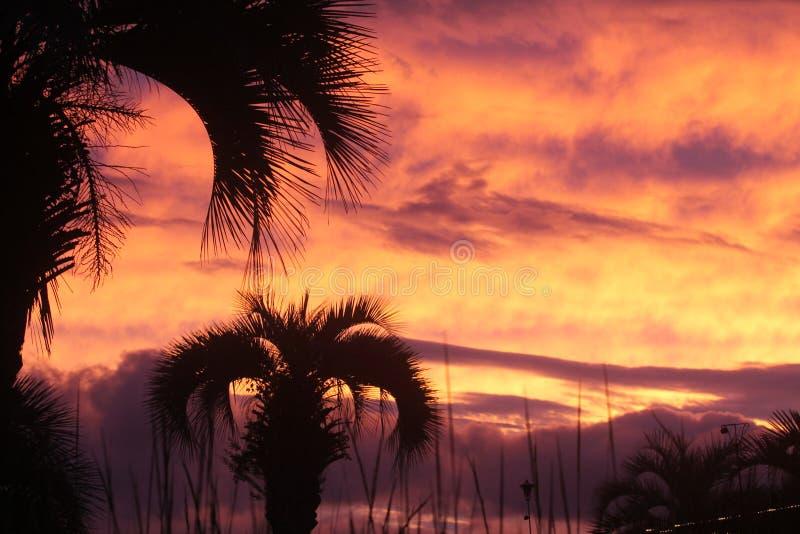 Sc d'île de Johns de coucher du soleil photos libres de droits