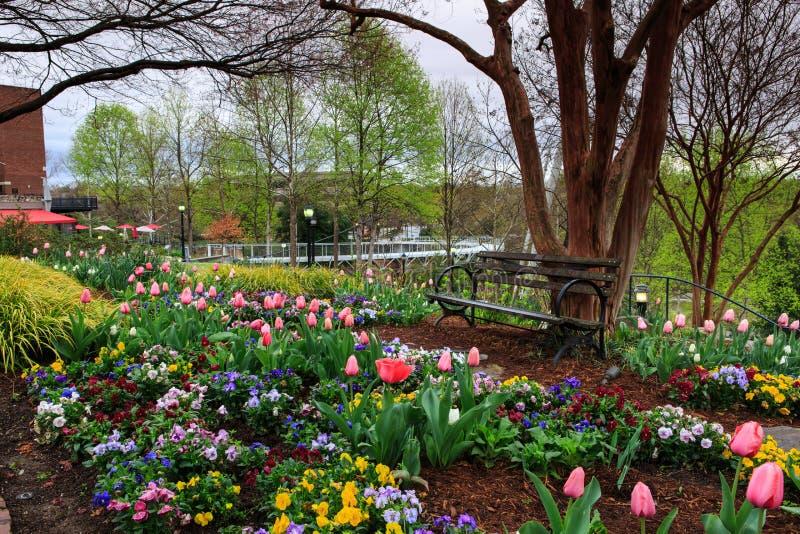 SC de Greenville do parque das quedas do jardim da mola fotos de stock royalty free