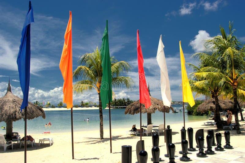 Scacchi sulla spiaggia fotografia stock libera da diritti