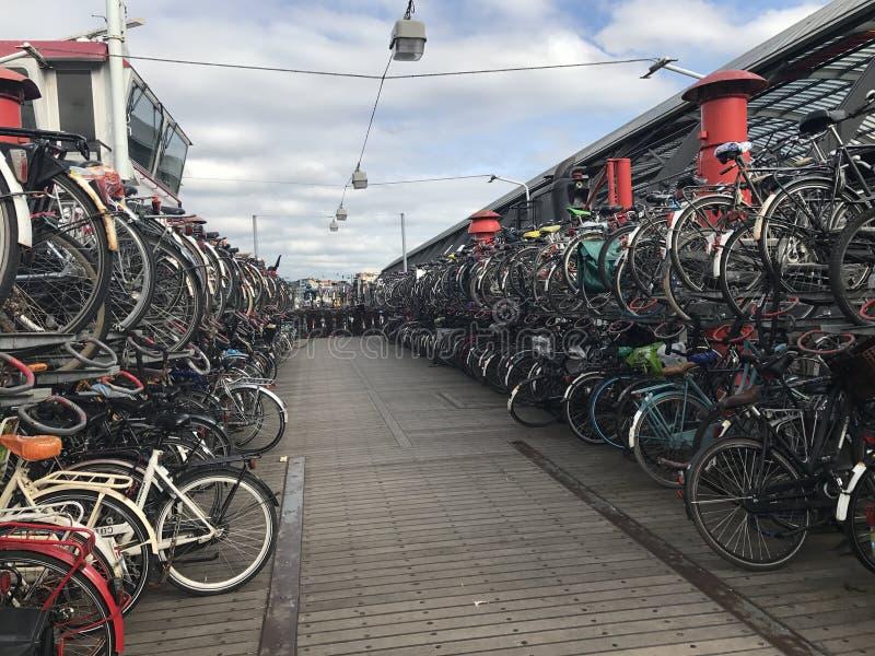 Scaffale della bici a Amsterdam Paesi Bassi fotografie stock