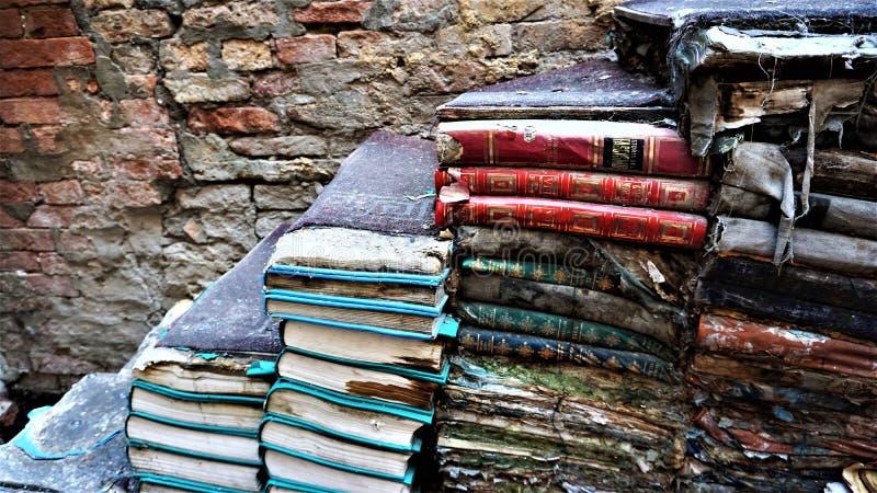 Scaffale di Acqua Alta a Venezia: un silvicoltore dai libri reali fotografia stock