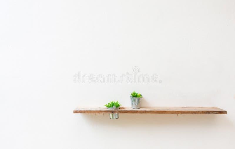 Scaffale di legno sulla parete bianca con la pianta verde immagini stock