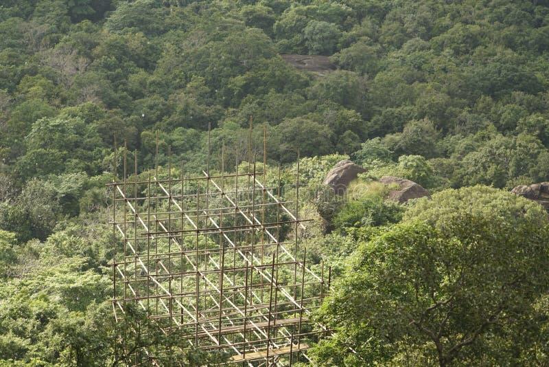 Scaffolding above the jungles of Sri Lanka stock image