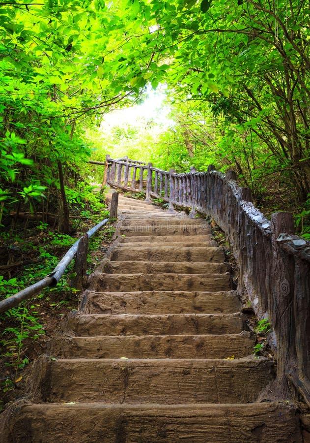 Scala alla foresta, parco nazionale di Erawan, Kanchanbur, Tailandia fotografia stock