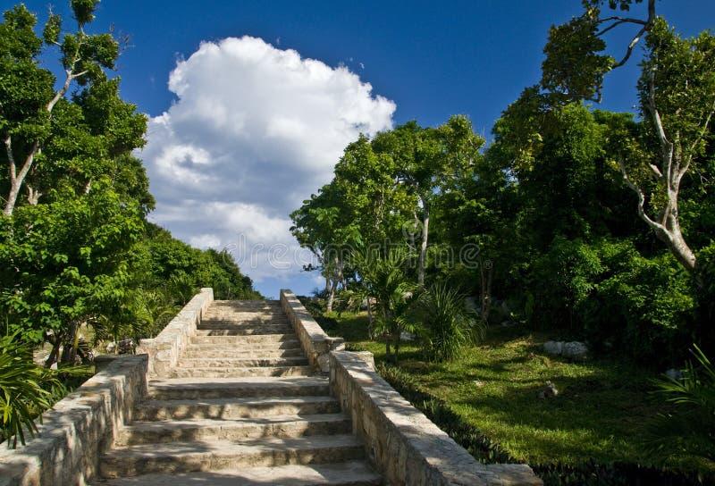 Scala antiche in Tulum fotografia stock libera da diritti