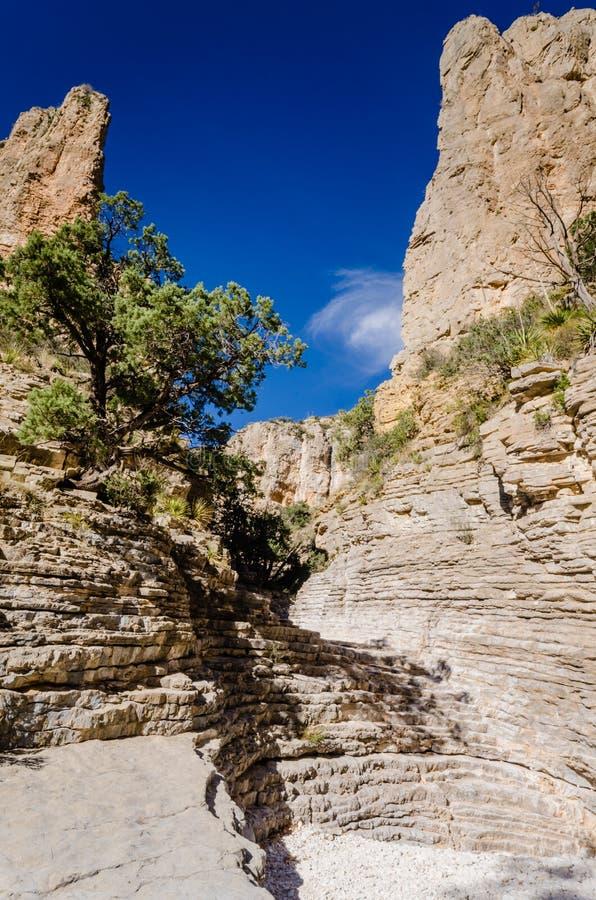 Scala del ` s della viandante - Guadalupe Mountains National Park - il Texas immagine stock