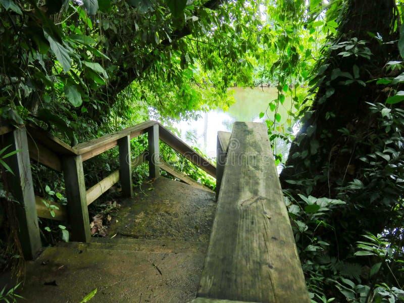 Scala di legno al fiume fotografia stock