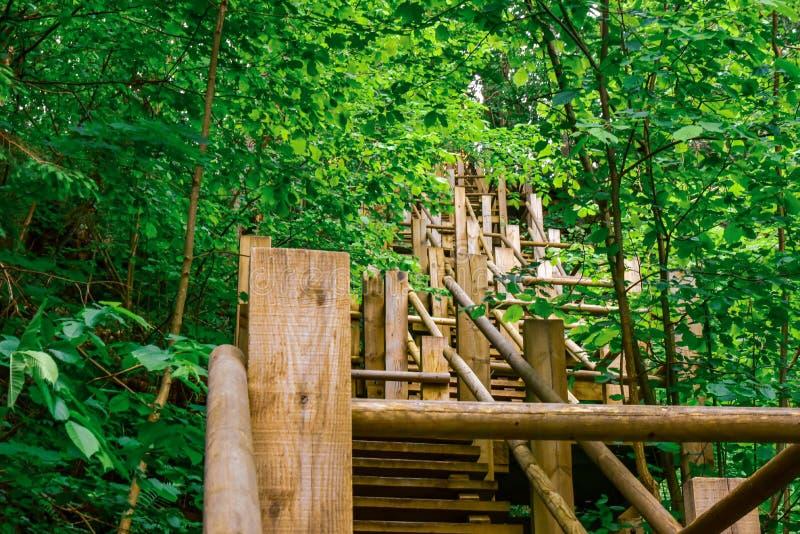 Scala di legno a forma di zigzag su per salita ripida fotografie stock libere da diritti