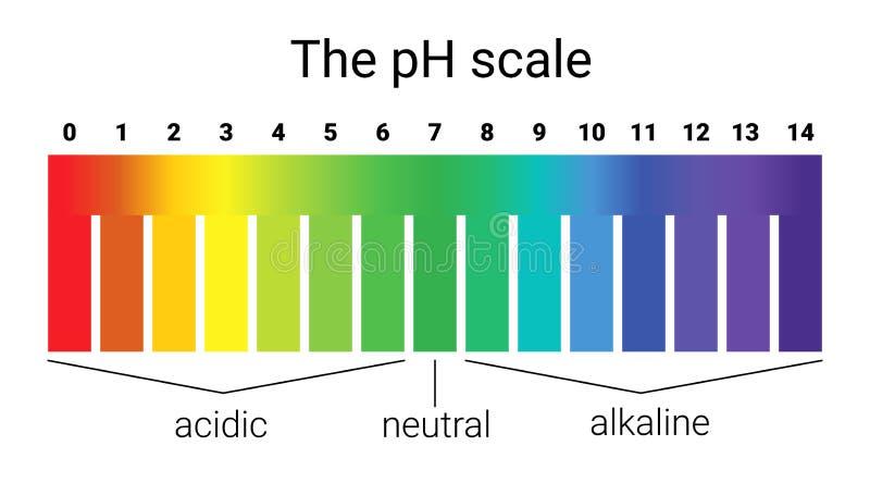 Scala di pH equilibrio acido-base infographic scala per la base dell'acido di analisi chimica illustrazione di stock