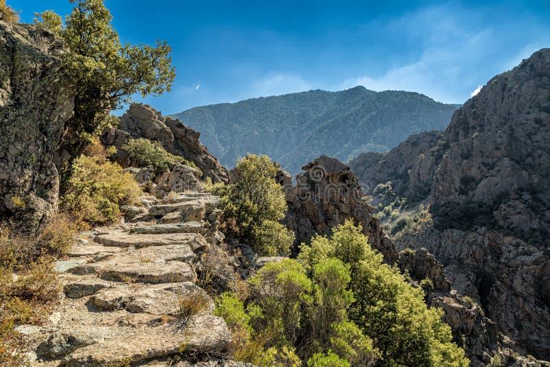 Scala di Santa Regina trail in central Corsica royalty free stock image