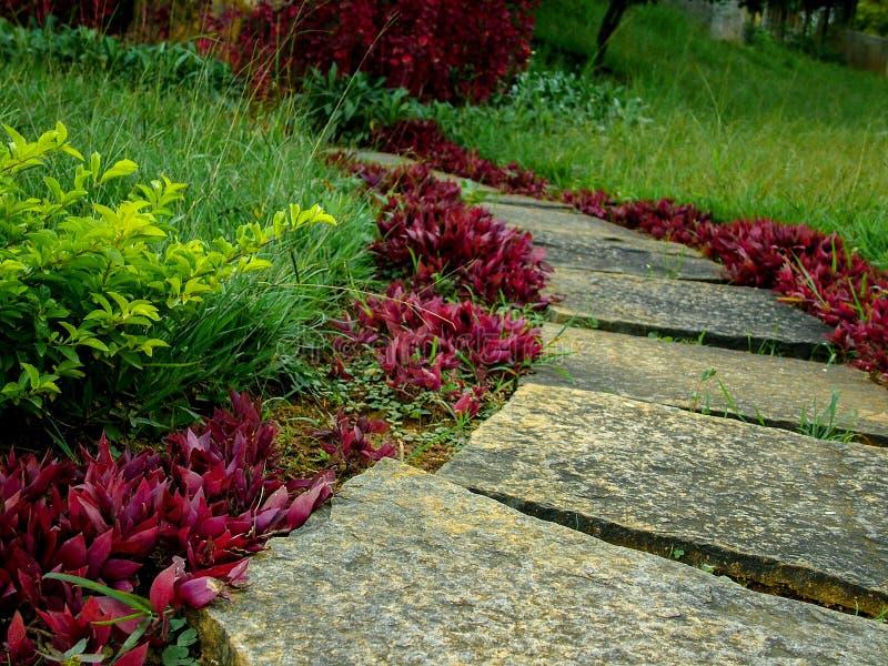 Scala a spirale nel giardino Per gradi immagini stock libere da diritti