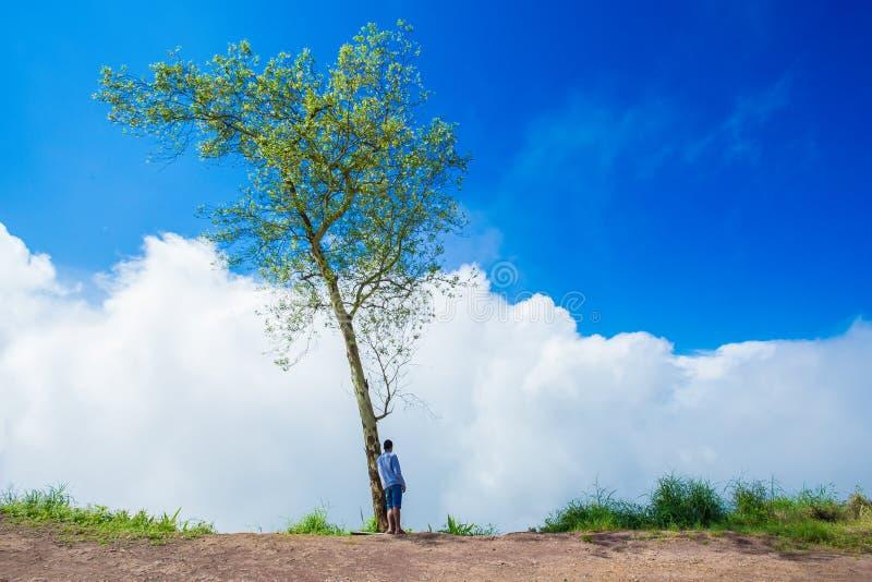 Scalata, facente un'escursione, mani dietro la testa, natura, condizione immagine stock libera da diritti