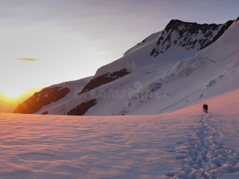 Scalatori di montagna che attraversano un ghiacciaio nelle alpi svizzere all'alba immagini stock libere da diritti