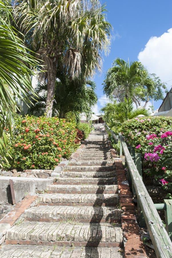 Scale dell'isola vergine fotografia stock