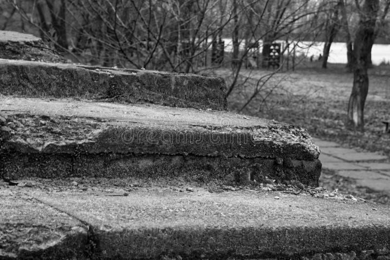 Scale della pietra di lerciume del mattone nel parco pubblico di autunno - fondo monocromatico fotografia stock libera da diritti