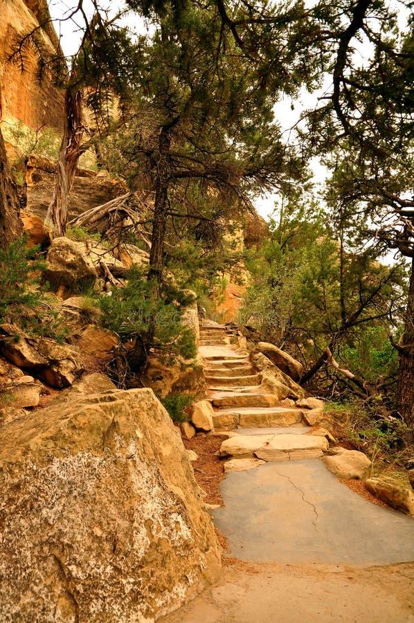 Scale di Cliff Palace fotografie stock libere da diritti
