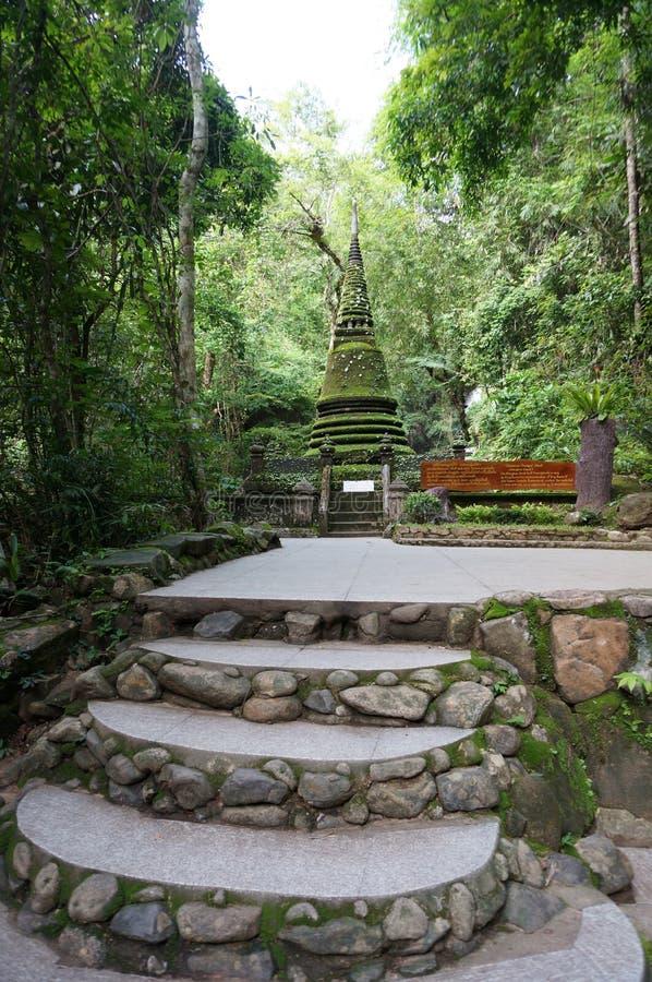 Scale di pietra alla pagoda verde muscosa fotografia stock
