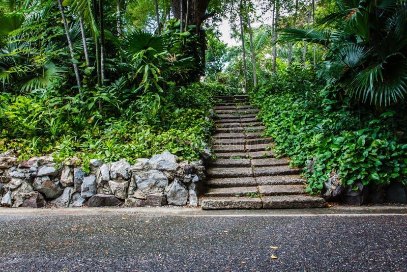 Scale di pietra naturali in giardino fotografia stock immagine di bangkok parco 41185574 - Scale in giardino ...